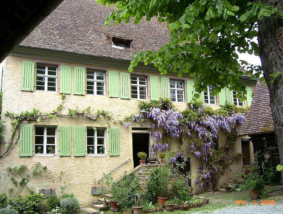Old Mill near vineyards & woods - Ballrechten-Dottingen