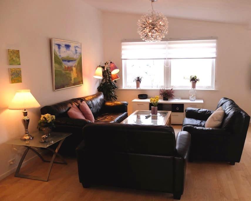 Large apartment in the city center - Tórshavn - Apartment