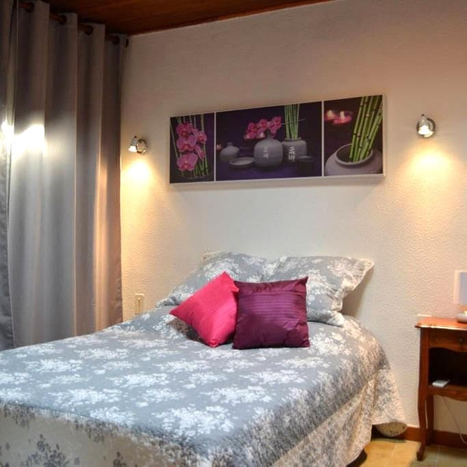Location appartement centre ville.  - Saint-Rémy-de-Provence - Daire