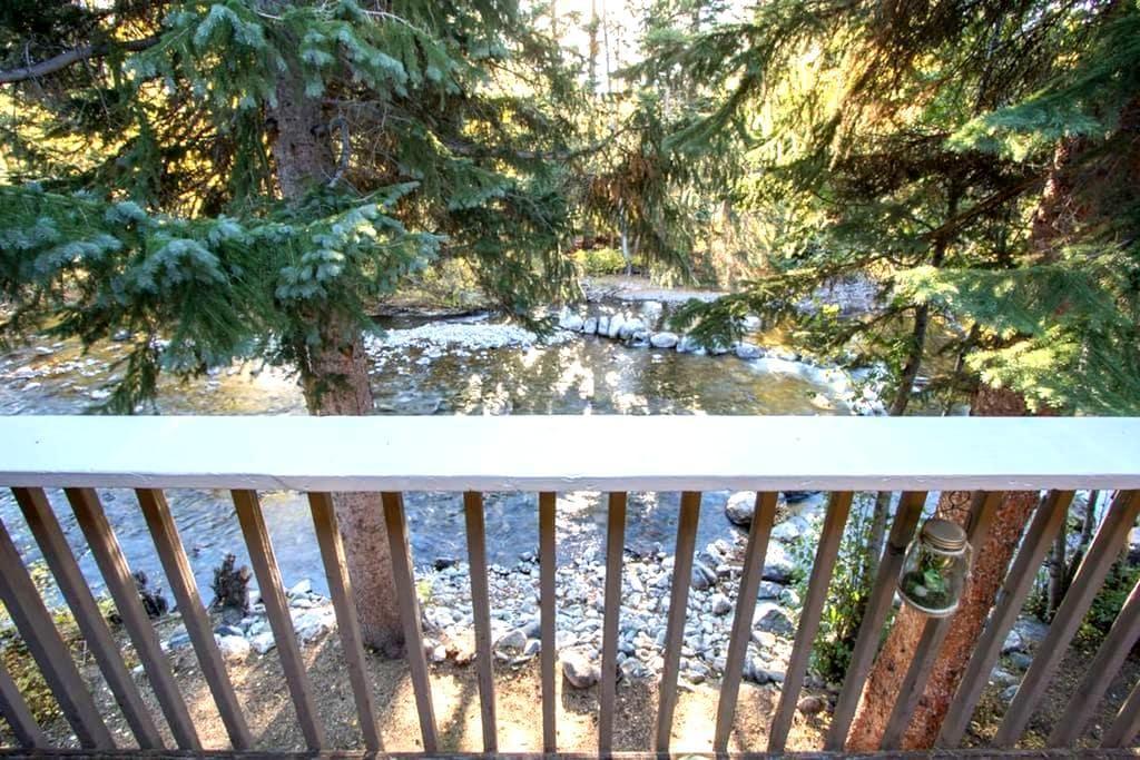 Ten Mile Creek Luxury Ski Condo off Main St - Frisco