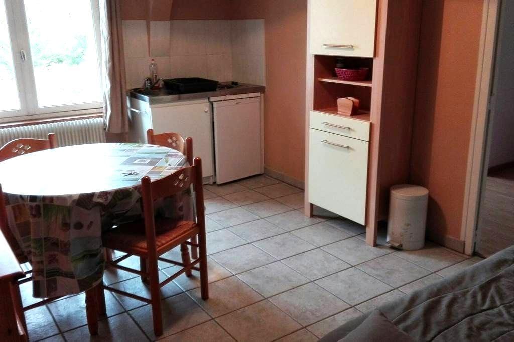 Appartement centre-ville 28 m2 - Châtellerault - Apartment