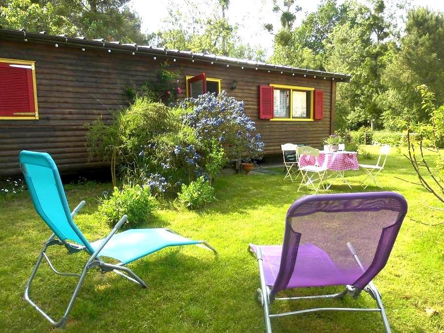 bungalow bois en lisière de forêt - Montigné-lès-Rairies - Bungaló