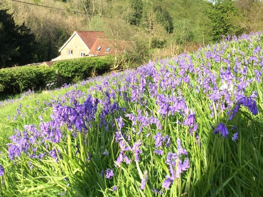 Escape to the Wye Valley - Whitebrook - Cabin