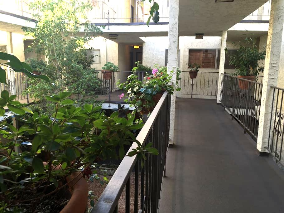 ***Best Condo In West Hollywood*** - West Hollywood - Apartment