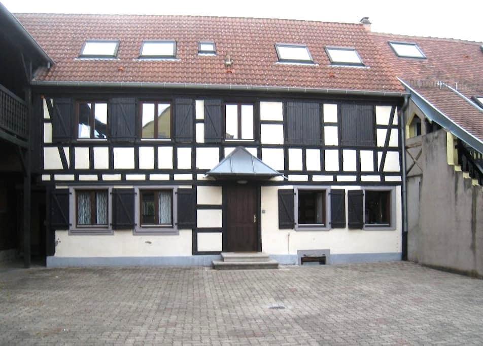 Strasbourg-lingolsheim, cosy little Alsacian Heart - Bas-Rhin - Apartament