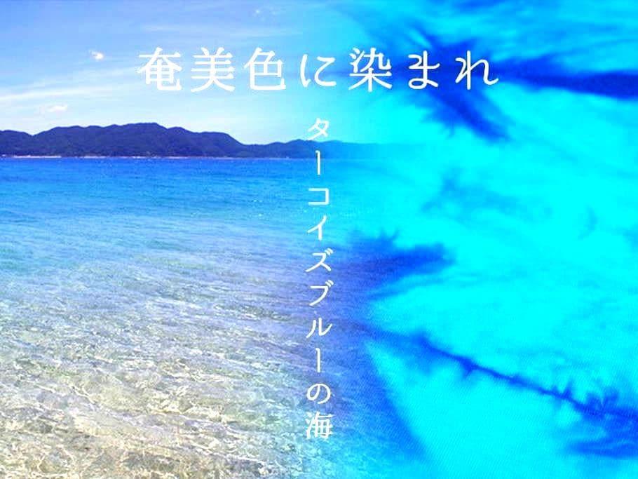 """『奄美ゲストハウス""""TegeTege""""』 - Amami-shi - Dom"""