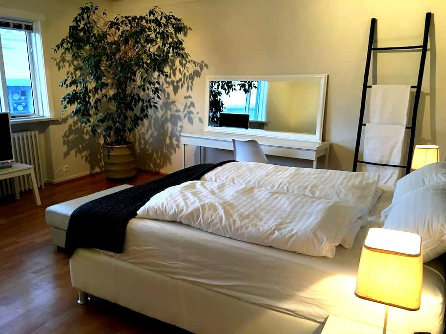 Luxury and spacious room close to the old harbor - Reykjavík