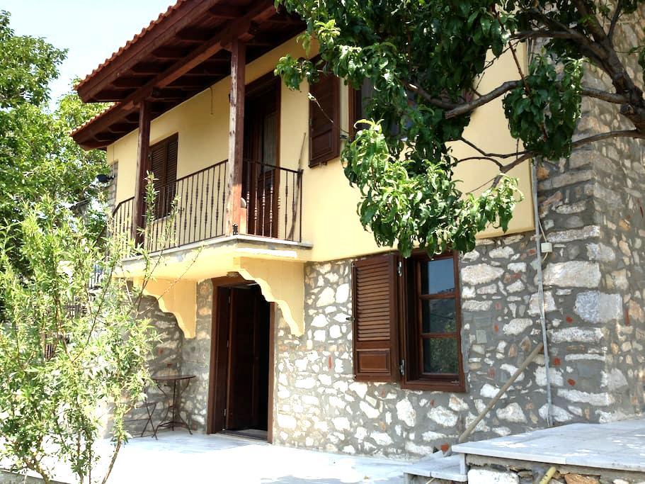 Traditional renovated studio 40sqm - Thasos - Flat