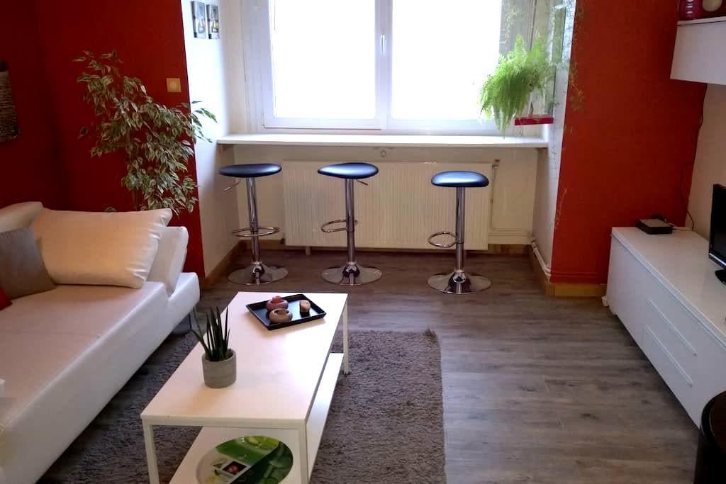 Agréable meublé face mer à Malo les Bains - Dunkerque - Appartement