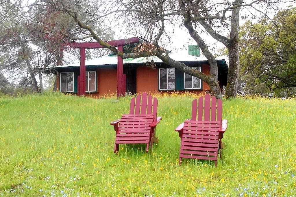 One hour from Yosemite Pk. Cottage in the woods - Coarsegold - House