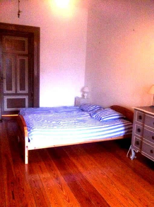 Très grande chambre lumineuse - Strasburgo - Bed & Breakfast