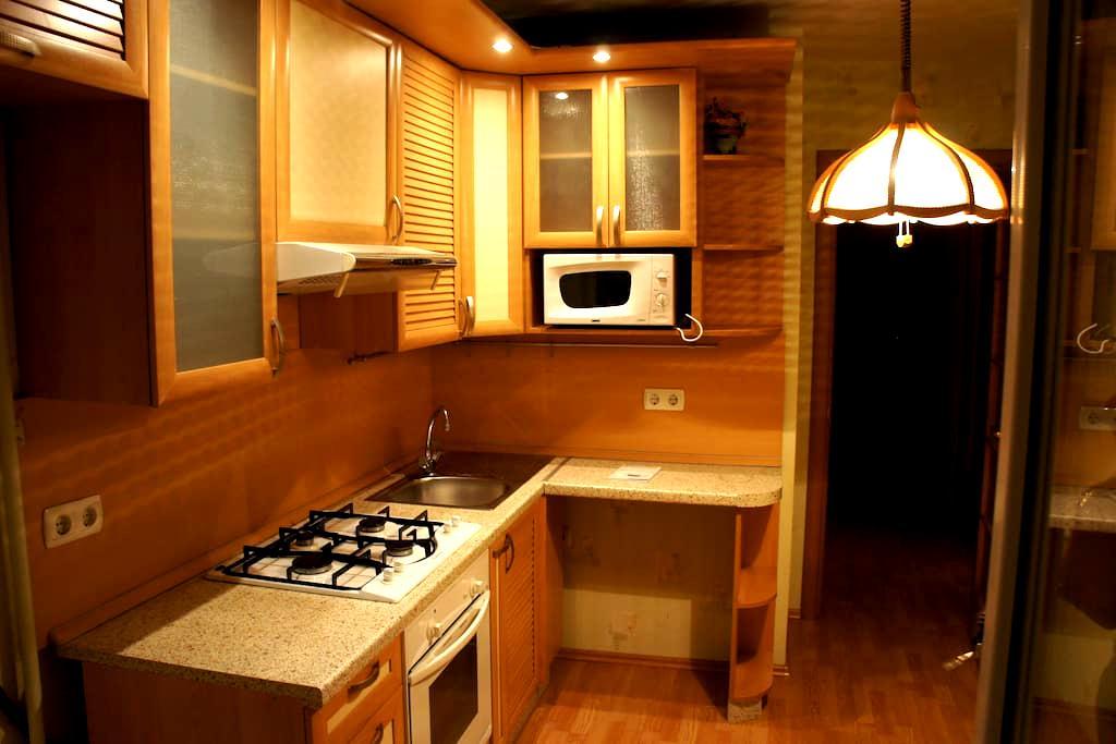 Cozy one bedroom apartment - Yekaterinburg - Apartment