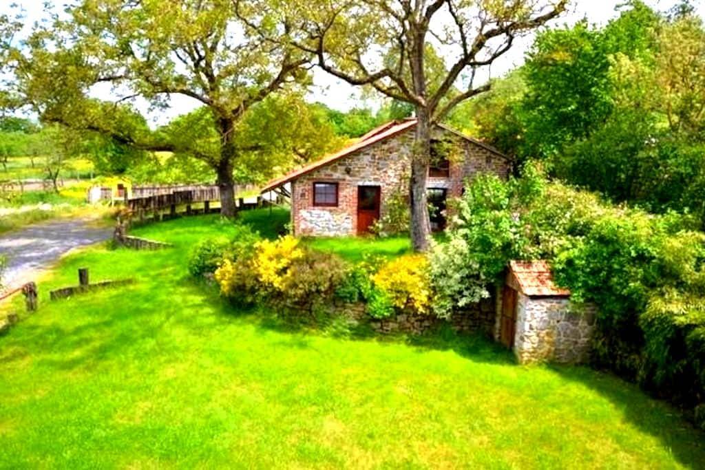 Cottage du noyer ( 3 vallées ) - Couvin - Hus