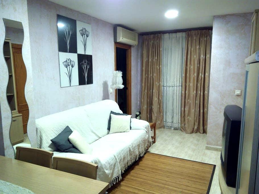 Apto dos dormitorios en Guardamar - Guardamar del Segura