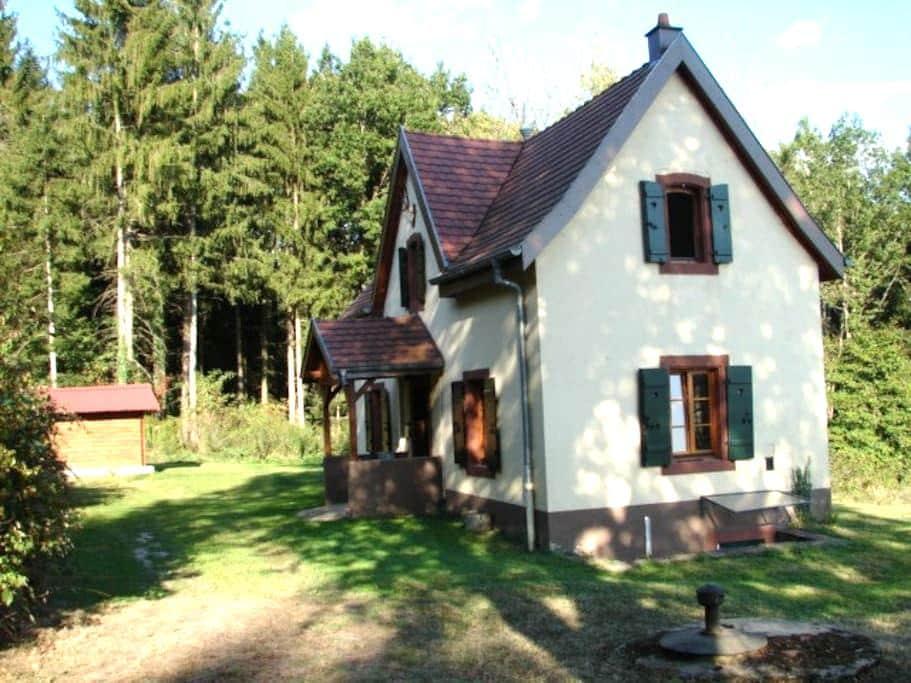 Pavillon de Chasse / Jagdhaus - Niederbronn-les-Bains - Casa