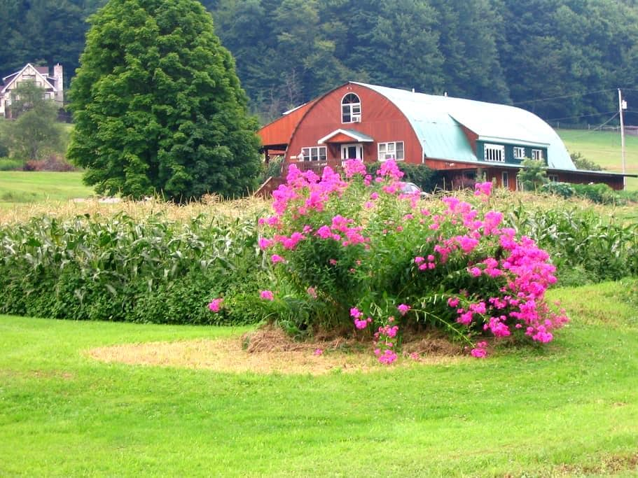 Frosty Hollow Bed and Breakfast - Coudersport