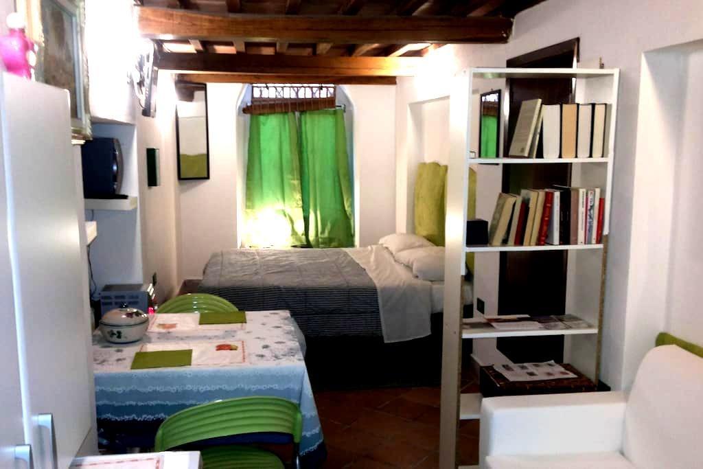 Monolocale (Studio) in centro Siena - Sienne - Loft