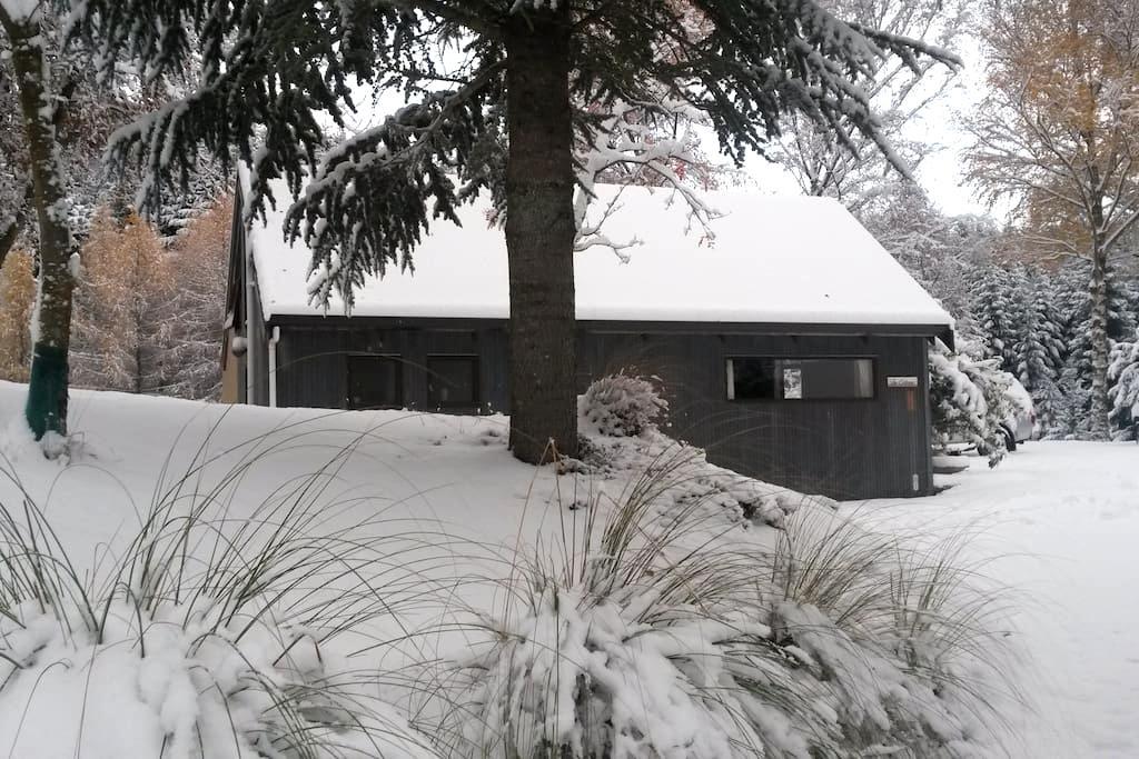 Cosy Retro Cottage - Dalefield - Rumah