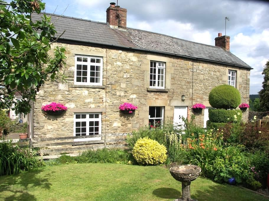 Traditional Foresters Cottage - Bream, Lydney - Hus