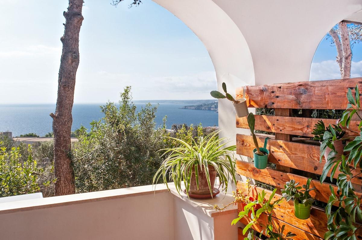 Terrazza Belvedere Vista Mare Apartments For Rent In Santa