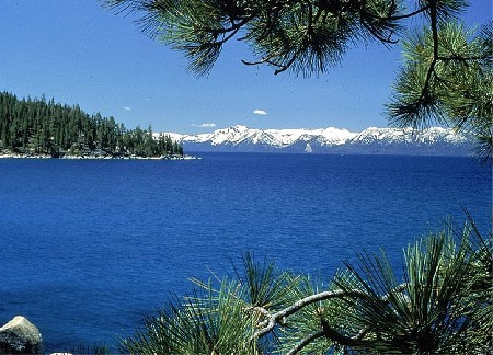 Trent from Tahoe City