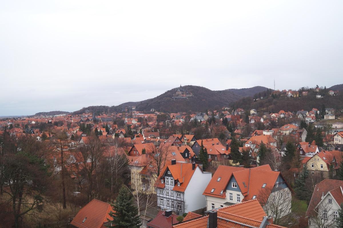 Regiohotel from Bad Harzburg