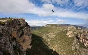 Quim From Albaida, Spain