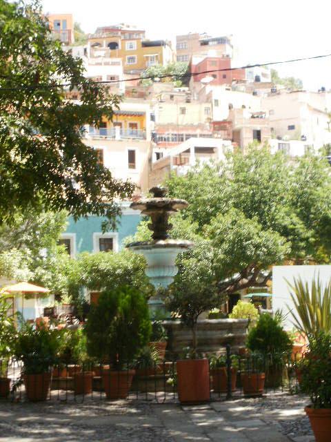 Trini from Guanajuato