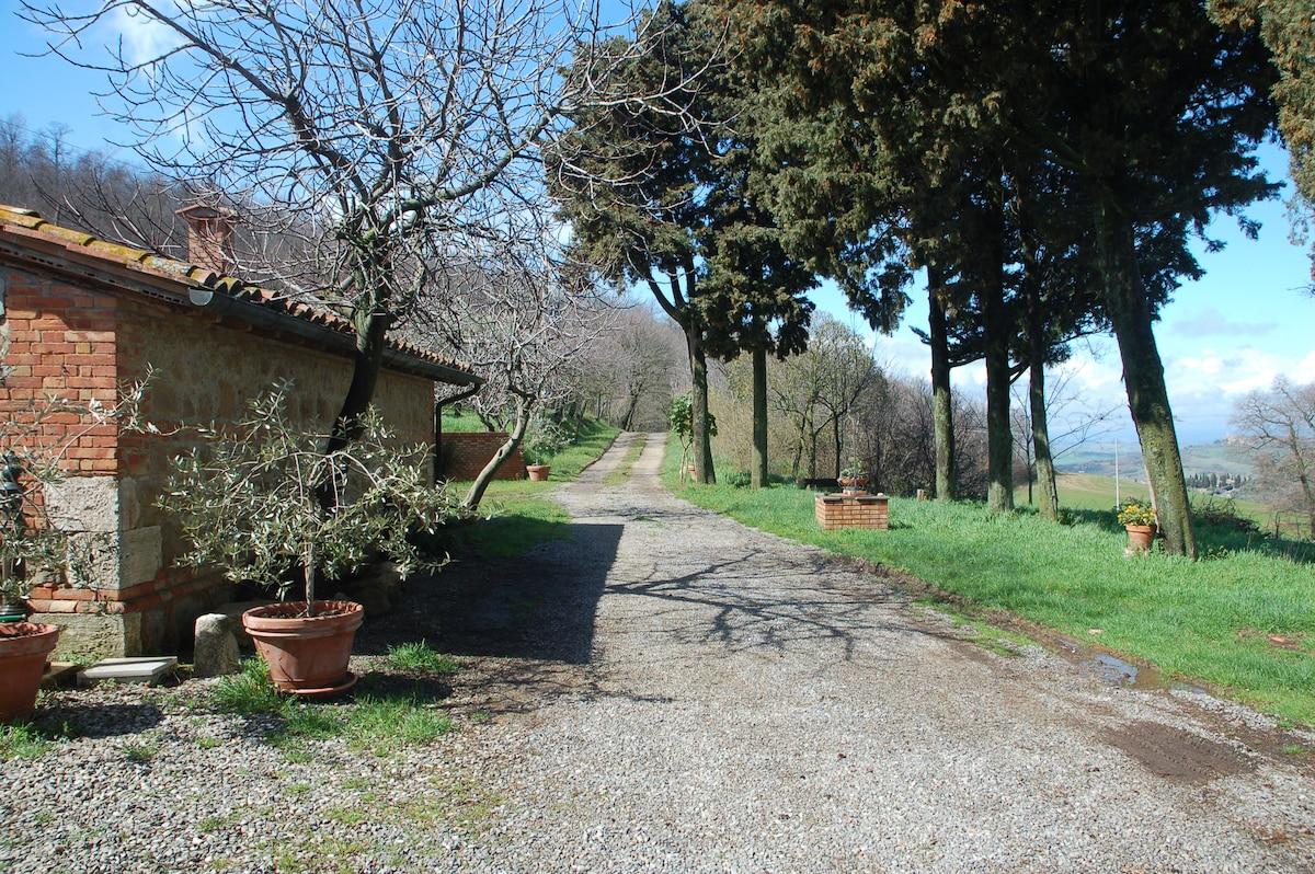 Andreina from Monticchiello