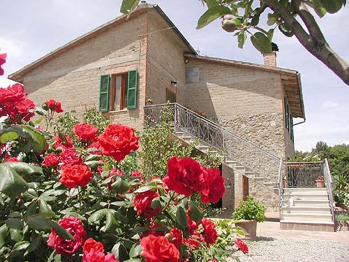 Simona from Casenovole ( bagni di Petriolo)