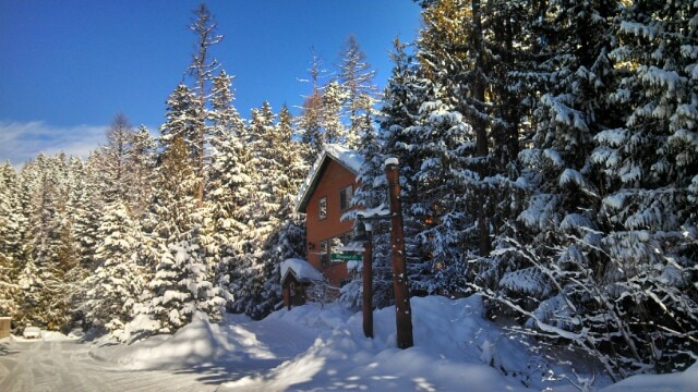 Cedar Treehouse From Whitefish, MT