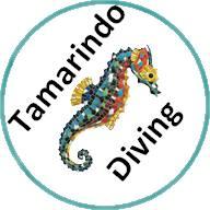 Davide from Tamarindo