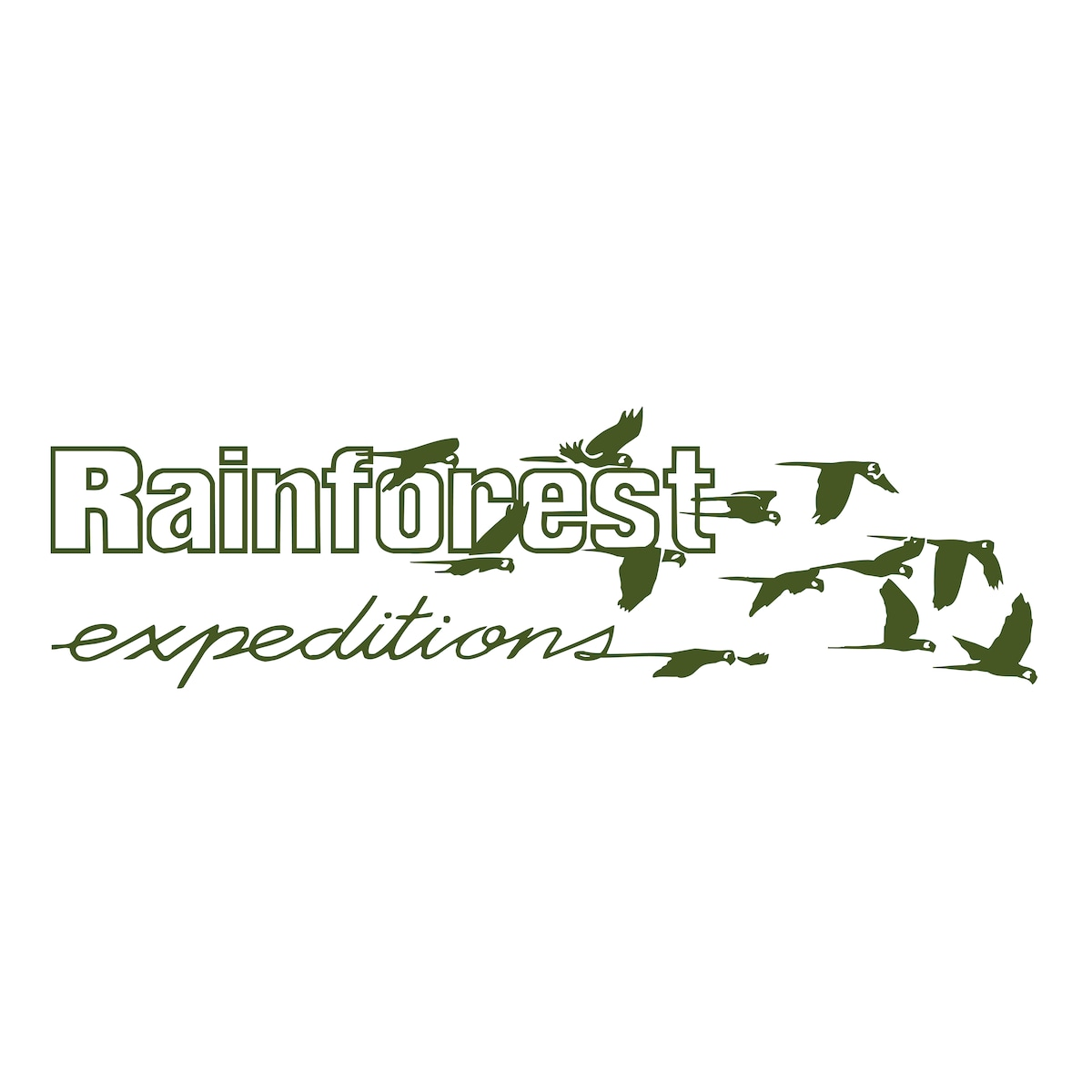 Rainforest from Puerto Maldonado