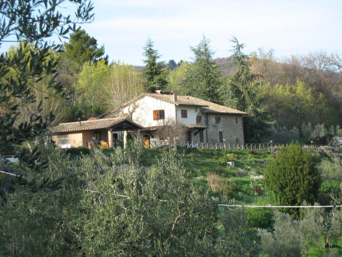 Orietta from Assisi