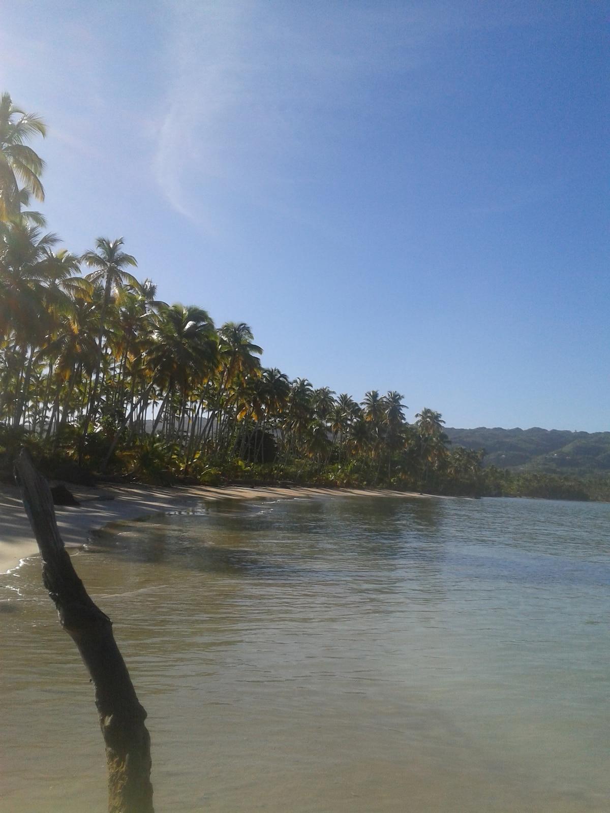Vanessa From Las Terrenas, Dominican Republic