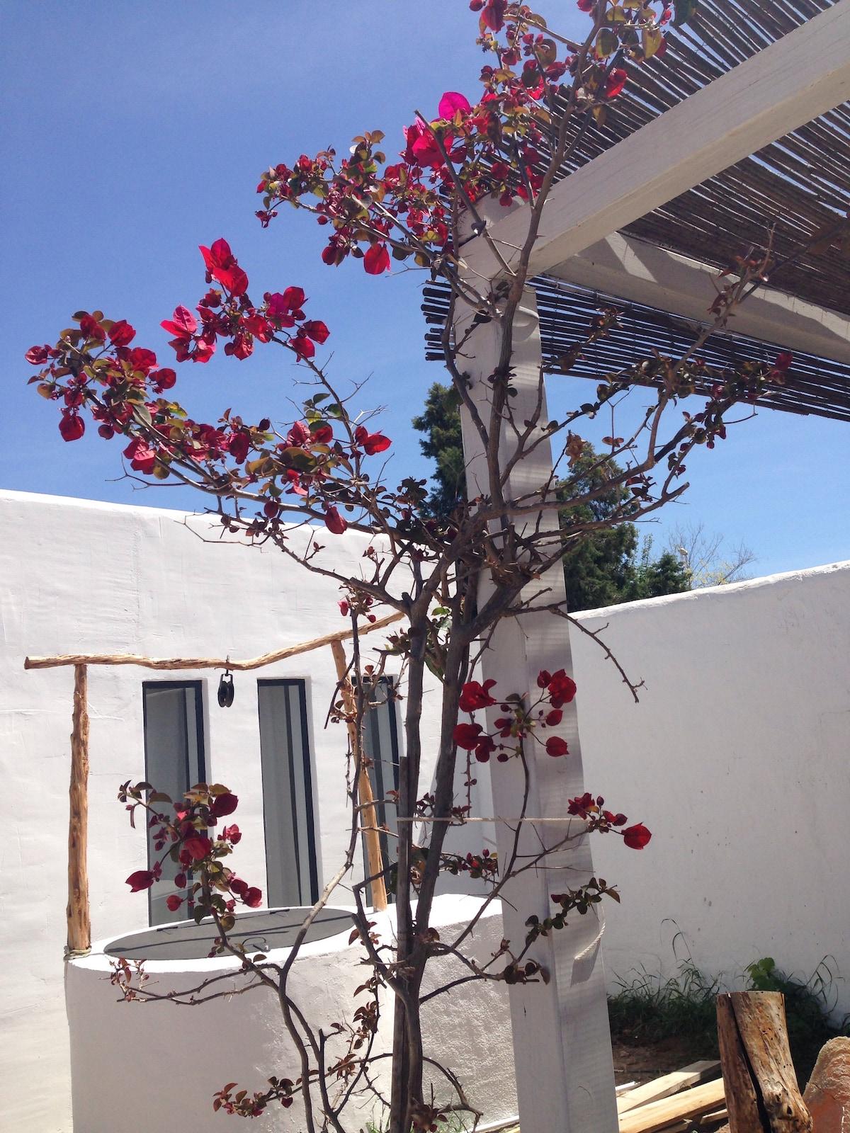 Silke from Ibiza