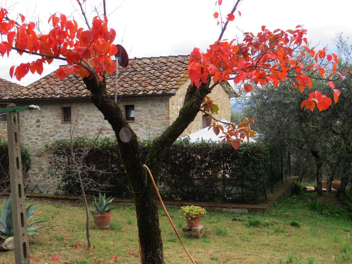 Giuliano From Buonconvento, Italy