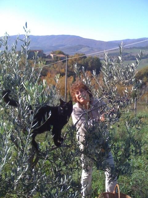 Maria Alessandra from Radicondoli