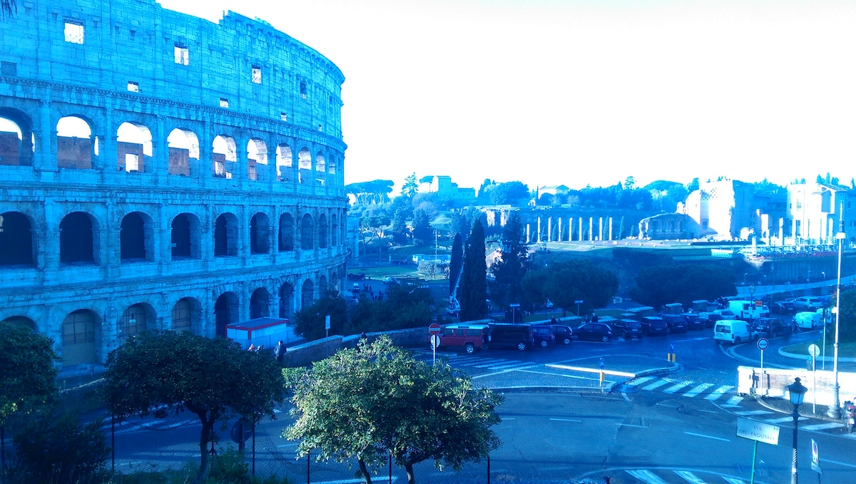Gelu from Roma