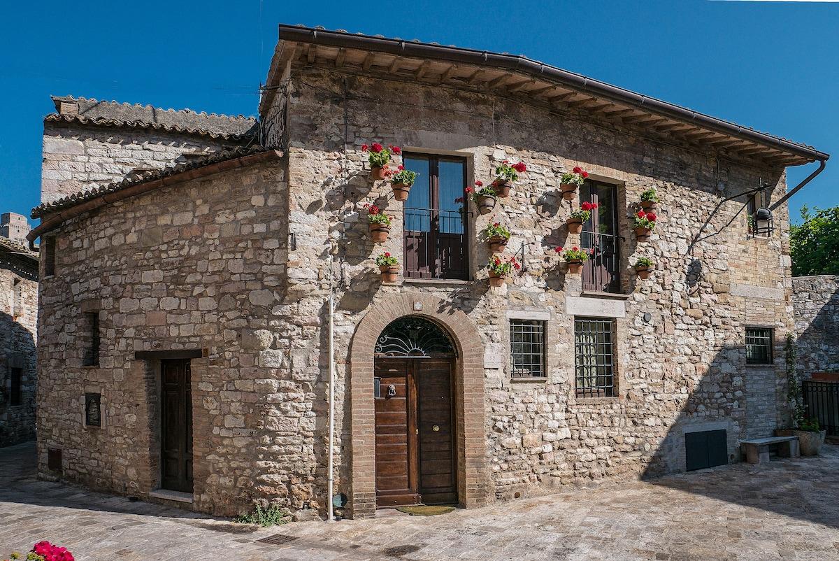 Cinzia da Assisi