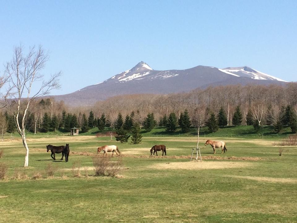 Paard Musée(Onuma Nagareyama Ranch) from Nanae-cho