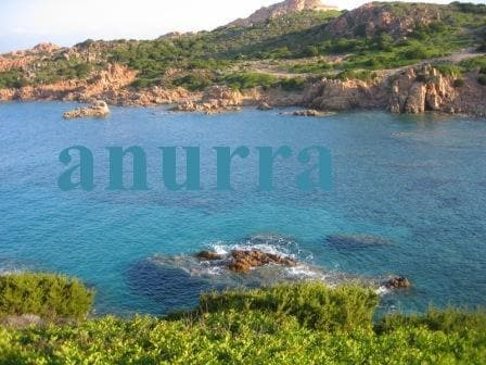 Anurra from Costa Paradiso