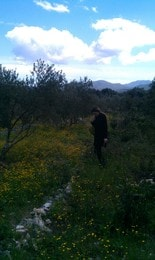 Violeta55 From Sreser, Croatia
