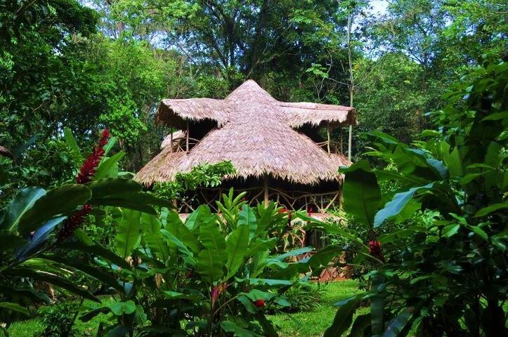 Casa From Costa Rica