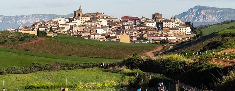 Find boliger i San Alfonso