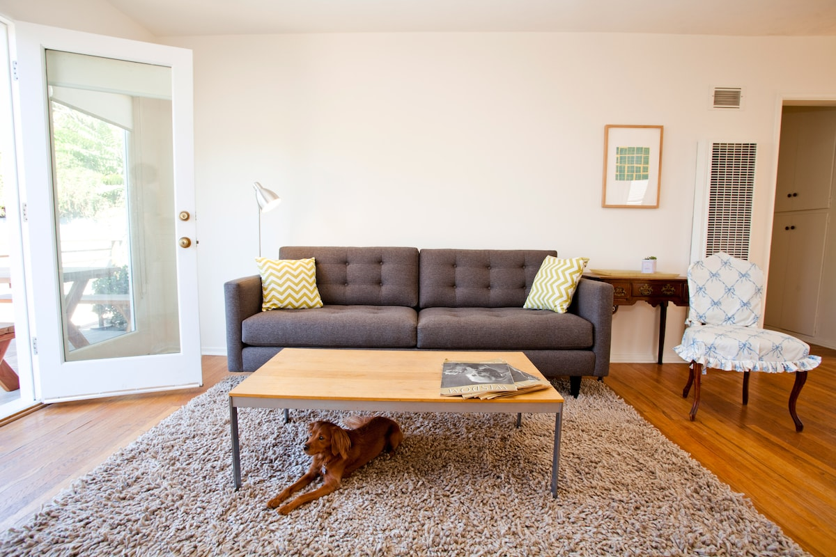 Livingroom, with Whisky the dog (who likes to visit from time to time...)