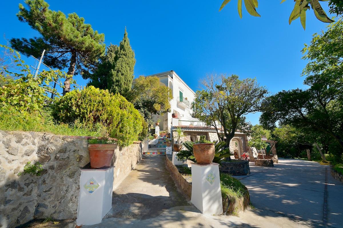 Exclusive Villa apartment-1 Ischia