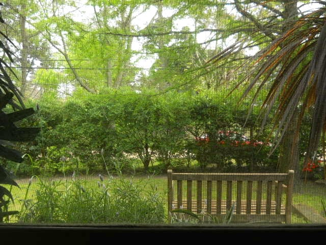 The view from your bedroom