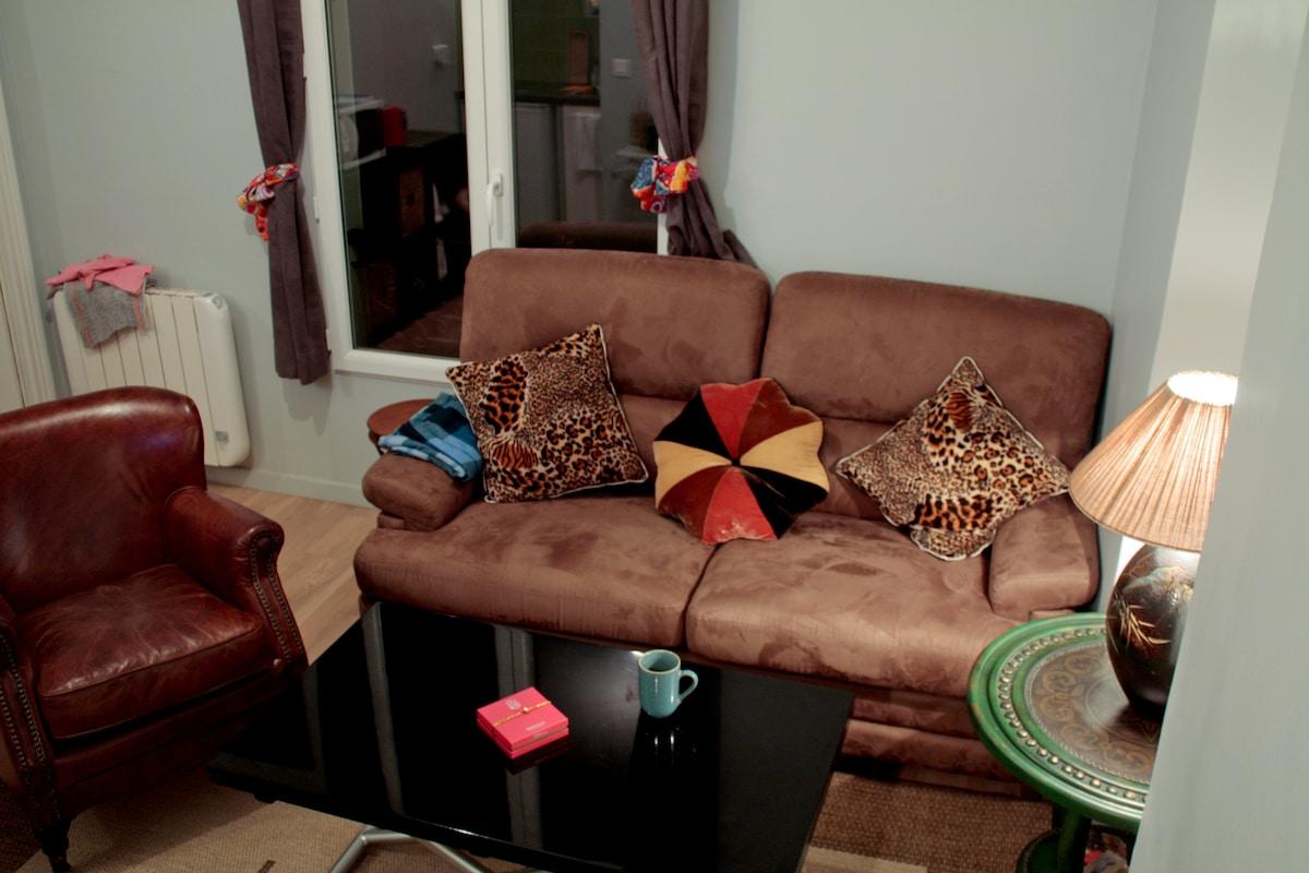 Le salon et le canapé-lit / The livingroom and the sofa-bed