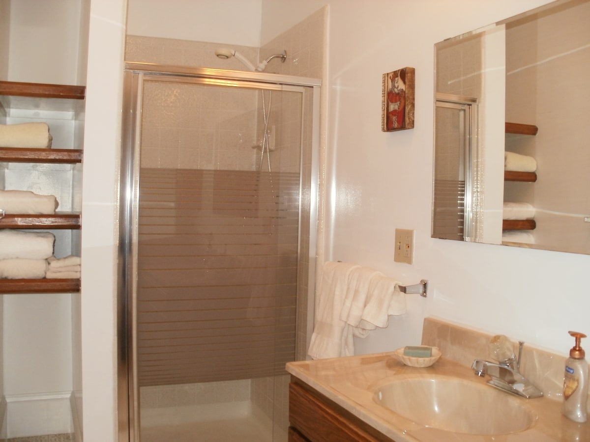 Sunny ,roomy attached bathroom
